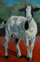 Olieverfschilderij Jonge geit